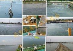 鱼塘养殖曝气gao压风机